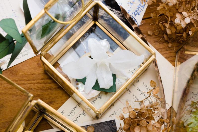schöne blumenbox mit echter weißer orchidee, die kein Wasser braucht und für lange zeit hält. Für Hochzeit oder als Geschenk.