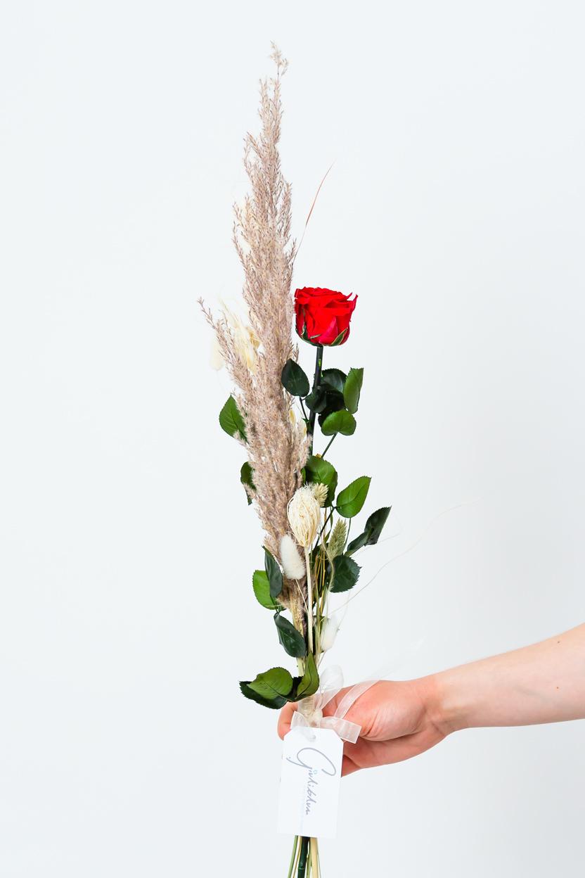 rote Rose für Valentinstag